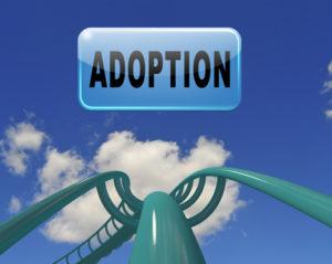 Adoption Rollercoaster