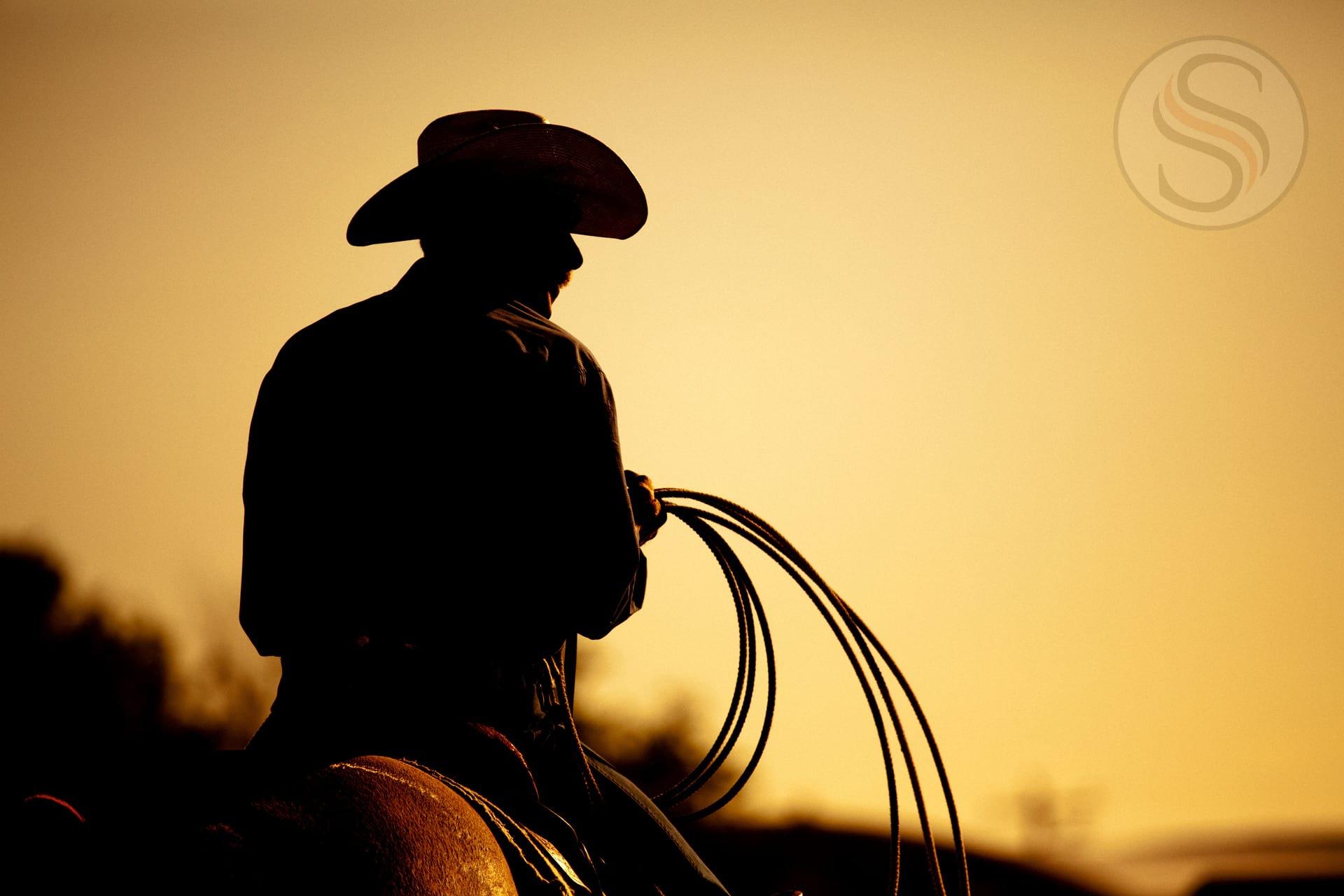 Cowboy Take Me Away, but don't take my money!